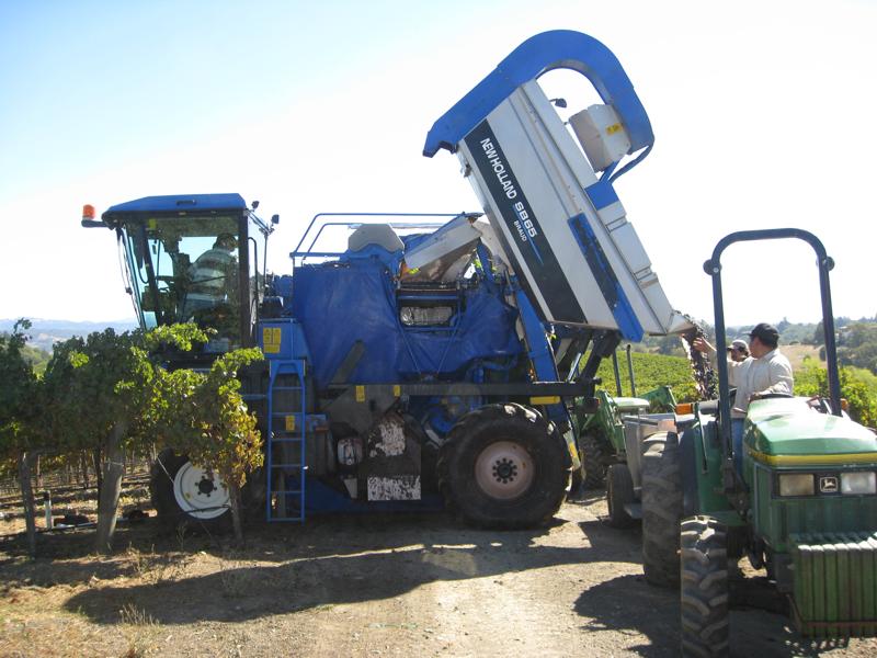 Harvesting 08 016